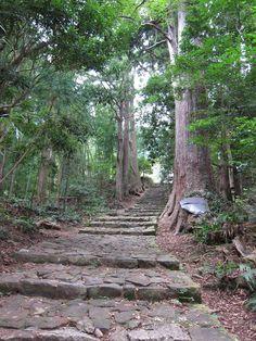 日本書紀にも登場し古くからパワースポットとして信仰を集めてきた熊野地方その信仰の中心となる熊野三山は参詣道である熊野古道を含め2004年に世界遺産にも認定されました特に熊野古道は道としては世界で二例目のめずらしい世界遺産で一度は歩いてみたいと思っている方も多いのではないでしょうか 熊野古道と一口に言ってもルートはさまざま今回は初心者でも歩きやすいおすすめのコースをご紹介します