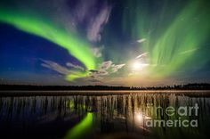 Less Than 5 Comments 3rd place -  Northern Lights Over A Lakeby  by Mikko Karjalainen - Fine Art America