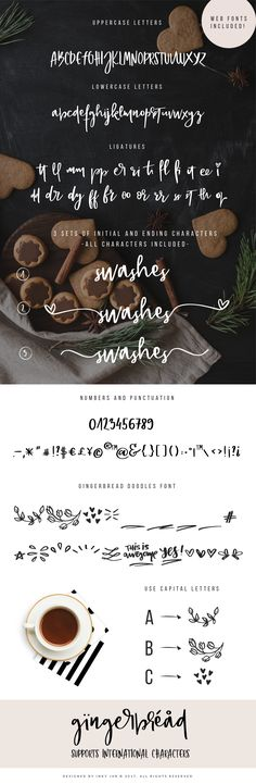 Gingerbread is a bouncy, hand lettered font duo with lots of swashes and illustrations. It has 2 additional sets of stylistic alternates of beginning and ending letterforms.As this font is perfect for feminine brands, I provided a set of 9 premade logo templates for you to use for yourself or your clients.
