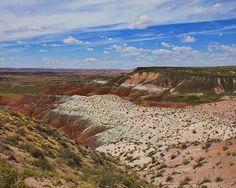"""Desert - Arizona"""""""