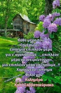 Greek Quotes, Good Morning, Beautiful, Anastasia, Pink Roses, Pets, Animals, Furniture, Decor