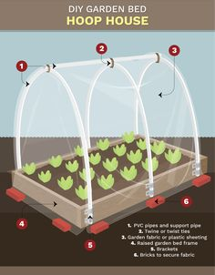 Backyard Vegetable Gardens, Veg Garden, Vegetable Garden Design, Garden Boxes, Fruit Garden, Edible Garden, Garden Plants, Greenhouse Cover, Greenhouse Plans
