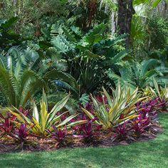 Landscape Designer Palm Beach - Colorful Landscapes - Front Yard - Back Yard