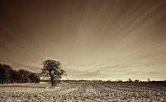 8 Common Landscape Photography Mistakes Beginners Make | Light Stalking