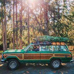 Bringing home the tree - KJP & Sarah Vickers