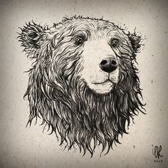 Bear and the Raven by Evre Başak, via Behance