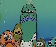 Imagem de spongebob, funny, and meme Spongebob Faces, Funny Spongebob Memes, Cartoon Memes, Cartoon Pics, Funny Relatable Memes, Stupid Funny Memes, Spongebob Cartoon, Cartoons, I Phone 7 Wallpaper