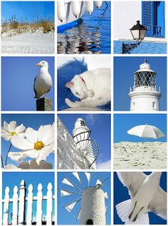 blue white by the sea. Take a pic a day- use color schemes from each room Collages, Color Collage, Beautiful Collage, Cottages By The Sea, Colour Board, Coastal Style, Colour Schemes, My Favorite Color, Shades Of Blue