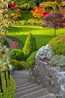 nature garden, Butchart Gardens in British columbia, Canada Beautiful Landscapes, Beautiful Gardens, Beautiful Flowers, Beautiful Places, Plant Design, Garden Design, Garden Paths, Garden Landscaping, Garden Trees