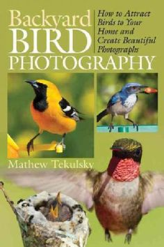 Backyard Bird Photography: How to Attract Birds to Your Home and Create…