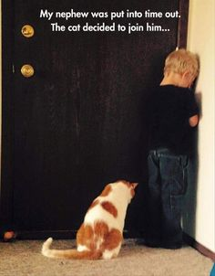 A little kid is put into time out, his cat decides to join in. This is what the best friend should do. It is a wise idea to bring a pet to every little kid.