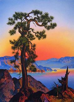Old Pine by John Revill
