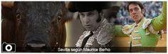 La Feria de Abril según Maurice Berho - Mundotoro.com #toros #heridos #Sevilla #FeriadeAbril #fotos
