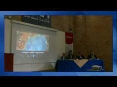 Megaforo el Bosón de Higgs, una excusa para pensar en la innovación