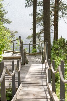 Stairs to the lake.