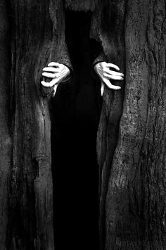 In my mind, I see this as the part Salome sees something/someone stepping out of the tree (during her bus ride home)