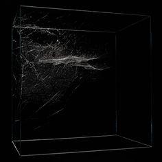 Tomàs Saraceno, Cosmic Jive: the Spider Session, Museo di Villa Croce, Genova, 2014