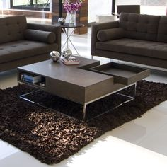 http://www.allmodern.com/Pangea-Home-Kristen-Coffee-Table-PHQ1162.html