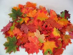 250 Fall Autumn Silk Leaves Wedding Crafts