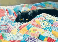 "Grandma's Quilt Black & White Kitty 1000 piece Jigsaw Puzzle    SunsOut Jigsaw Puzzles will provide a challenge for one and all.    Perfect for collectors to mat and frame.    Art by Susan Bourdet    Size: 27"" x 20""    Made in the USA, by SunsOut.    Eco-Friendly, Soy Based Inks & Recycled Board.    Recommended Ages: 8 & Up    Consumer Product Safety Notice:  WARNING: CHOKING HAZARD  Small parts Not for children under 3 years      SO28956  Regular price: $16.00  Sale price: $14.40"