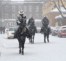 Royal Canadian Mounted Police - Wikipedia, the free encyclopedia Meanwhile In Canada, Police Uniforms, Army Uniform, Military Police, Police Wife, Canadian History, Canada Day, Emergency Vehicles, Beautiful Horses