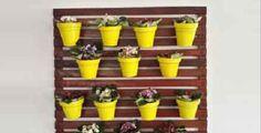 55% OFF em Painel de Treliça em Madeira Impermeabilizada 1 x 1m com 10 Vasos Coloridos e 10 Mudas de Dinheiro em Penca na Monalize Borges Paisagismo de R$220 por R$98.90. Parcele em até 12x no cartão.