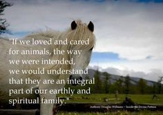 """""""Only when we have become nonviolent towards all life will we have learned to live well with others.""""  ― César Chávez"""