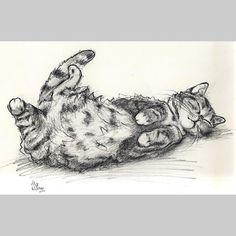Original Charcoal Drawing - Cat Original Illustration - ooak - Alisa Wilcher