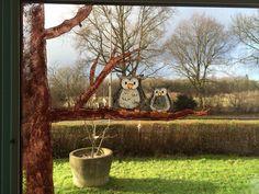 Raamschildering uil met boom
