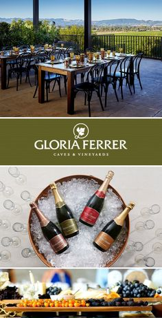 Breathtaking event space and plenty of the bubbly at Gloria Ferrer Caves and Vineyards Sonoma County, Wine Country, Caves, Vineyard, Bubbles, Space, Party, Wedding, Floor Space