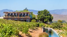 This quaint town along the is home to some award winning wineries. We've listed our top picks for wine tasting in Robertson Wine Tasting, Garden Bridge, Where To Go, Vineyard, Outdoor Structures, Magazine, Vine Yard, Magazines, Vineyard Vines