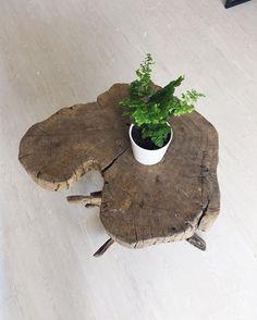 Esse é o pedaço de árvore que fizemos de mesinha de centro da sala de estar. Ainda vamos ajeita-la, e decorar com alguns objetos. #rustico #arvore #industrialinterior #decorinspiration #decoração #apartamento #reforma #industrial #scandinaviandesign #decoration #home #nordicdesign #industrialdecor #apartamento051 #tokstok #etna #leroymerlin