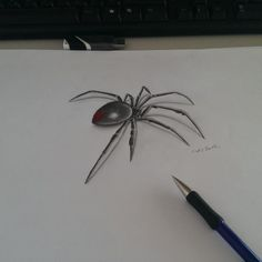 widow spider pencil art tattoo by designs interfaces tattoo . Black Widow Spider Tattoo, 3d Spider Tattoo, Spider Drawing, 3d Art Drawing, 3d Pencil Art, 3d Pencil Drawings, Tattoo Drawings, Spider Pictures, Pictures Images