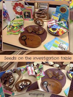 Seed investigation table from tishylishy