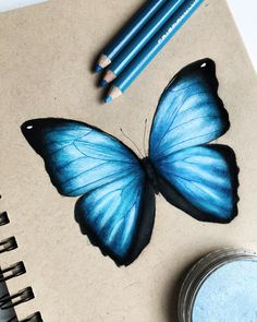 Butterfly drawing Butterfly drawing,A crayon painting I drew this blue butterfly and I really like how it turned out! I made this with prismacolor and pan pastel on strathmore toned tan paper. Go check. Cool Art Drawings, Pencil Art Drawings, Art Drawings Sketches, Realistic Drawings, Colorful Drawings, Drawing Techniques Pencil, Colored Pencil Techniques, Horse Drawings, Butterfly Drawing