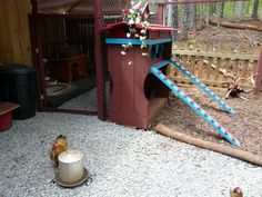 Arianna's Chicken Coop - BackYard Chickens Community