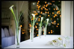 Calla lilies for main table