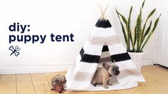 It's the second day of Puppy Week and we're bringing you this adorable DIY Puppy Tent that doubles as amazing room decor! Your puppy / kitten/ bunny/ hedgeho...