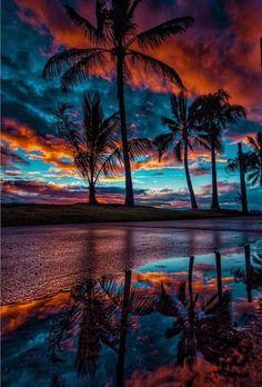 Palm Trees Beach, Beach Design, Sunset Photography, Amazing Photography, Reflection Photography, Travel Photography, Nature Wallpaper, Beach Art, Nature Scenes