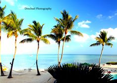 """""""The greatest discovery of all time is that a person can   change his future by merely changing his attitude."""" -- Oprah Winfrey. Islamorada, Florida Keys"""