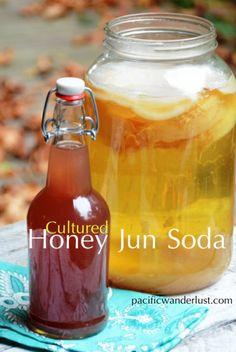 DIY Honey Jun Soda #probiotic #sodapop #raw #paleo #recipe