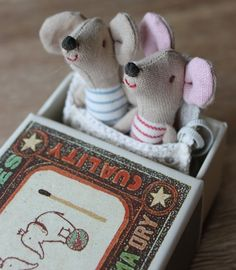 Mouse Twins in a match box! ahh so cute!