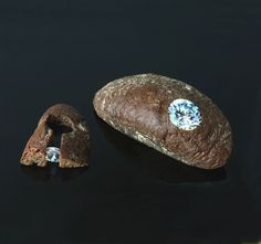 "Pawel Kaczynski / ""EXCLUSIVE"" - Internatinal Silverart Competition 2008 - broch and ring - bread, zircon,silver"