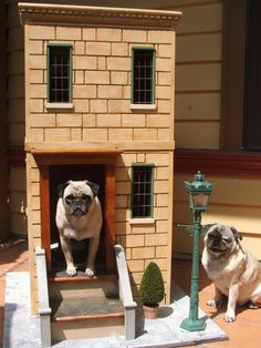 City dwellers, Buster and Bruno show off their urban-style home. The two-story house boasts an electric street light and an interior chandelier.