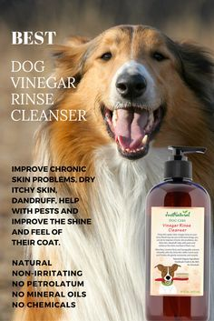 Your dog will never look or feel so good as vitamin rich formulas  protect and moisturize so that coats are left healthy, shinier, silky  smooth and more manageable.Our products are handmade fresh each day in small batches with  the purest nutritive and botanical ingredients.  This process allows us to provide products that are at their peak  and ready for your dog to experience truly nutritive wonders.