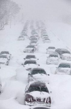 Amazing Pictures Of 2011 Chicago Snow Storm ~ Snow not so pretty ~ I'm not ready for this kind of snow!!!