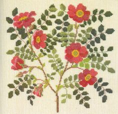 Flowers and Berries in Cross Stitch (14)