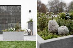 15x Eucalyptus Huis : 486 besten blumenkästen und topfpflanzen bilder auf pinterest