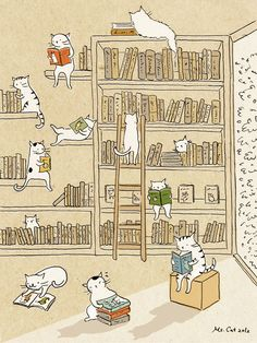 Library Cats @lophelia This picture is terrific. (I have to keep books away from my bunny or she'll eat them :-/ )