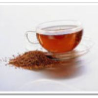Rooibos teas and the Top 10 Benifits of Drinking it